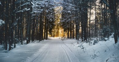 best time to buy winter vacation home in vermont